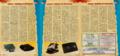 SGK 29 PL Consoles-Dream or Future.png
